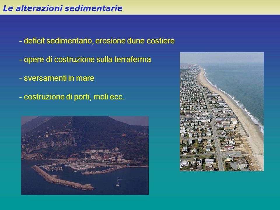 Le alterazioni sedimentarie - deficit sedimentario, erosione dune costiere - opere di costruzione sulla terraferma - sversamenti in mare - costruzione