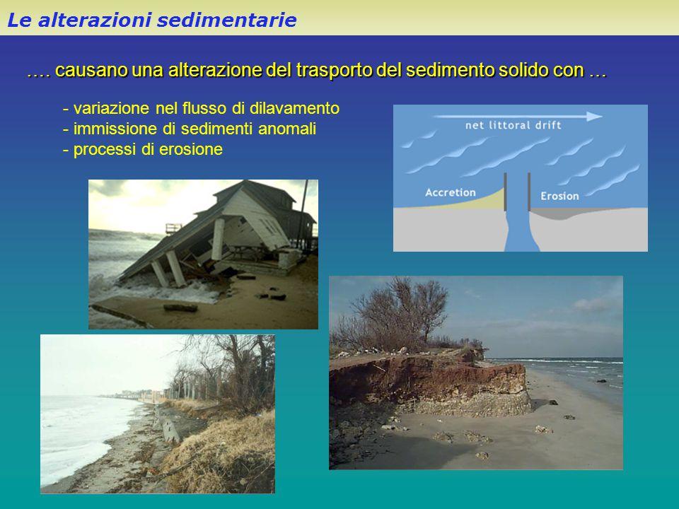 Le alterazioni sedimentarie …. causano una alterazione del trasporto del sedimento solido con … - variazione nel flusso di dilavamento - immissione di