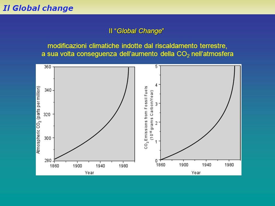 """Il """"Global Change"""" modificazioni climatiche indotte dal riscaldamento terrestre, a sua volta conseguenza dell'aumento della CO 2 nell'atmosfera Il Glo"""