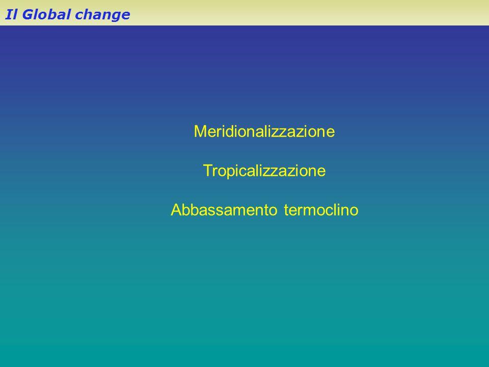 Il Global change Meridionalizzazione Tropicalizzazione Abbassamento termoclino