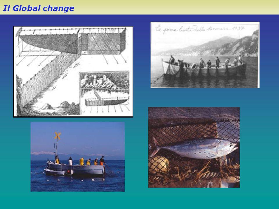 Il Global change