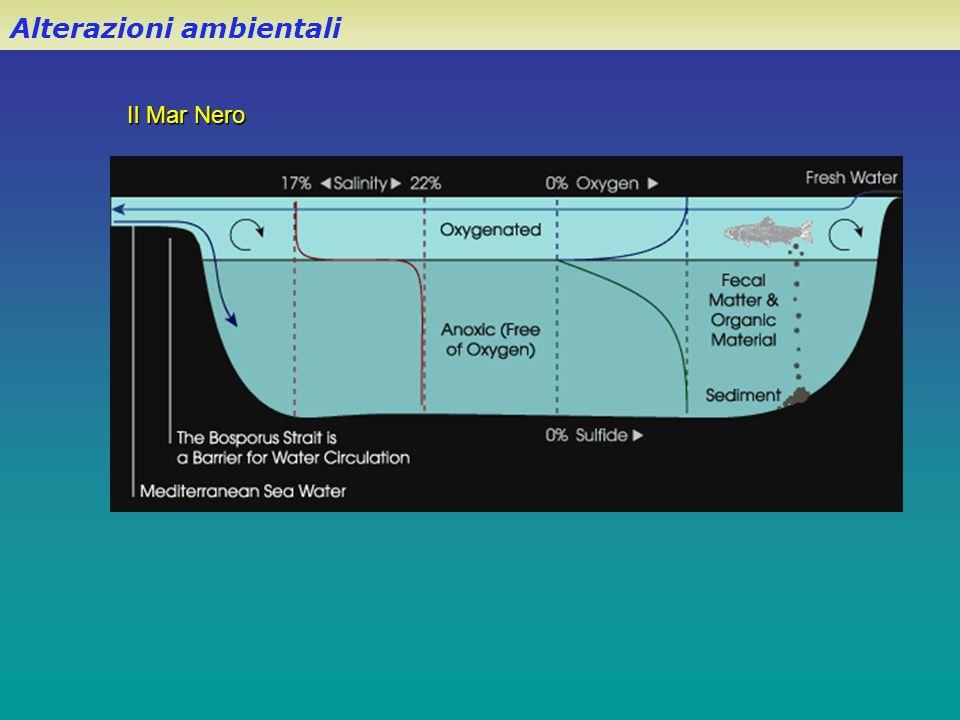 Il Mar Nero Alterazioni ambientali