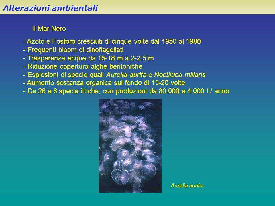 Il Mar Nero Alterazioni ambientali - Azoto e Fosforo cresciuti di cinque volte dal 1950 al 1980 - Frequenti bloom di dinoflagellati - Trasparenza acqu