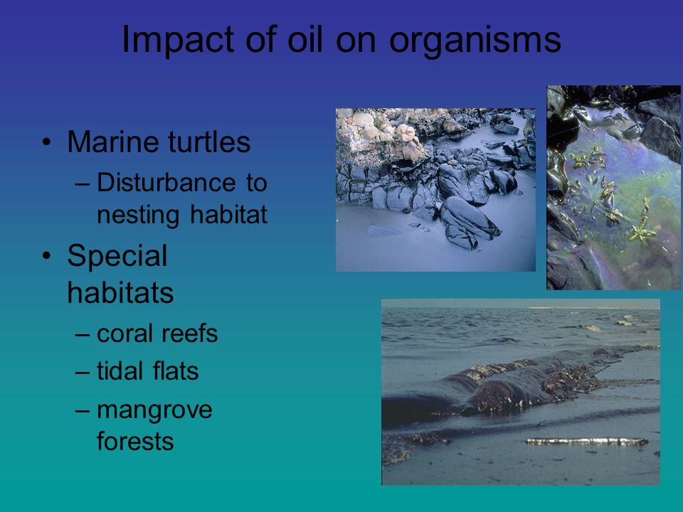 Il Global change Percnon gibbesi Marsupenaeus japonicus 1927 1930 1969 1986 1972 1999 Tropicalizzazione