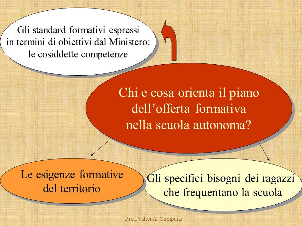 Prof.Valter A. Campana Gli standard formativi espressi in termini di obiettivi dal Ministero: le cosiddette competenze Gli standard formativi espressi