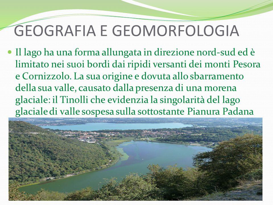 GEOGRAFIA E GEOMORFOLOGIA Il lago ha una forma allungata in direzione nord-sud ed è limitato nei suoi bordi dai ripidi versanti dei monti Pesora e Cornizzolo.