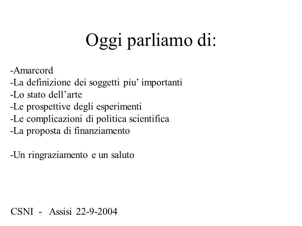 Oggi parliamo di: CSNI - Assisi 22-9-2004 -Amarcord -La definizione dei soggetti piu' importanti -Lo stato dell'arte -Le prospettive degli esperimenti -Le complicazioni di politica scientifica -La proposta di finanziamento -Un ringraziamento e un saluto