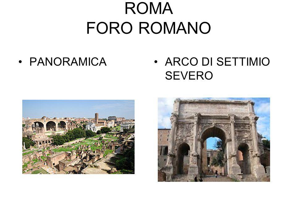 ROMA FORO ROMANO PANORAMICAARCO DI SETTIMIO SEVERO