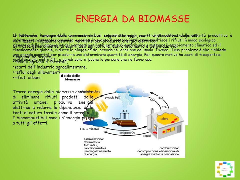 Le biomasse comprendono vari materiali di origine biologica, scarti delle attività agricole riutilizzati in apposite centrali termiche per produrre energia elettrica.