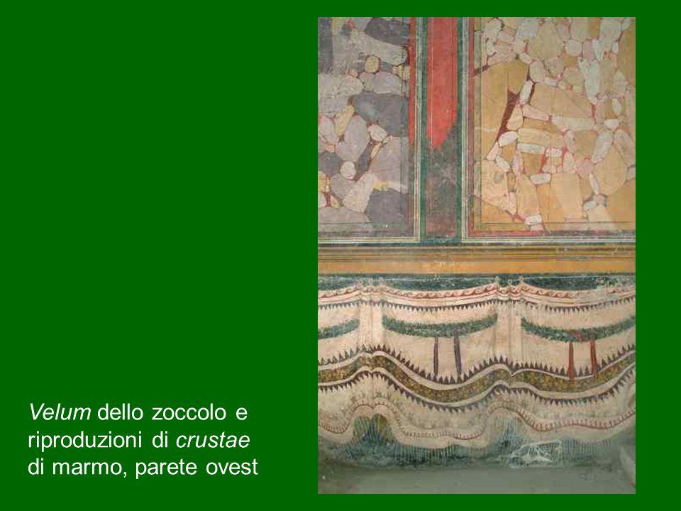 Velum dello zoccolo e riproduzioni di crustae di marmo, parete ovest