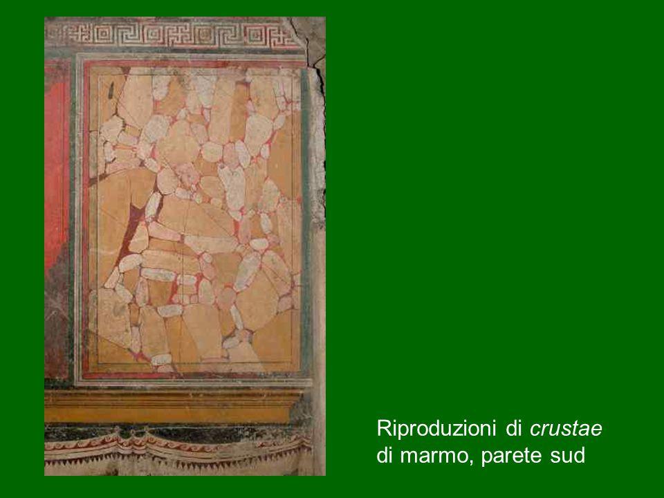 Riproduzioni di crustae di marmo, parete sud