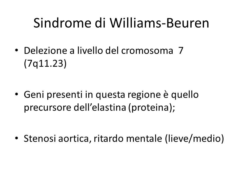 Sindrome di Williams-Beuren Delezione a livello del cromosoma 7 (7q11.23) Geni presenti in questa regione è quello precursore dell'elastina (proteina)