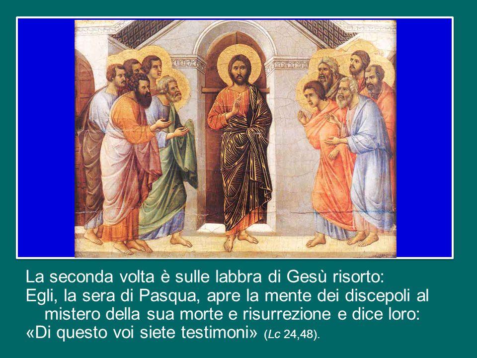 """Nelle Letture bibliche della liturgia di oggi risuona per due volte la parola """"testimoni"""". La prima volta è sulle labbra di Pietro: egli, dopo la guar"""