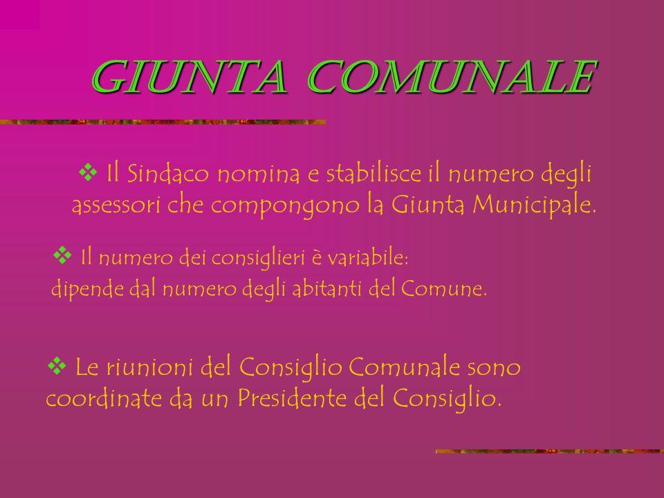 GIUNTA COMUNALE  Il Sindaco nomina e stabilisce il numero degli assessori che compongono la Giunta Municipale.  Il numero dei consiglieri è variabil