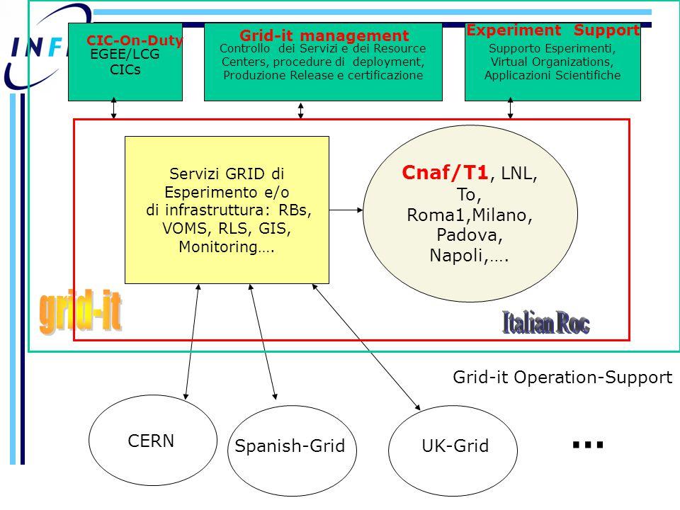 Supporto Esperimenti, Virtual Organizations, Applicazioni Scientifiche Servizi GRID di Esperimento e/o di infrastruttura: RBs, VOMS, RLS, GIS, Monitoring….