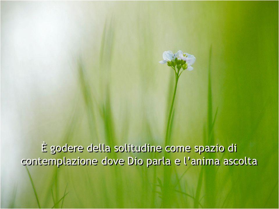 È godere della solitudine come spazio di contemplazione dove Dio parla e l'anima ascolta