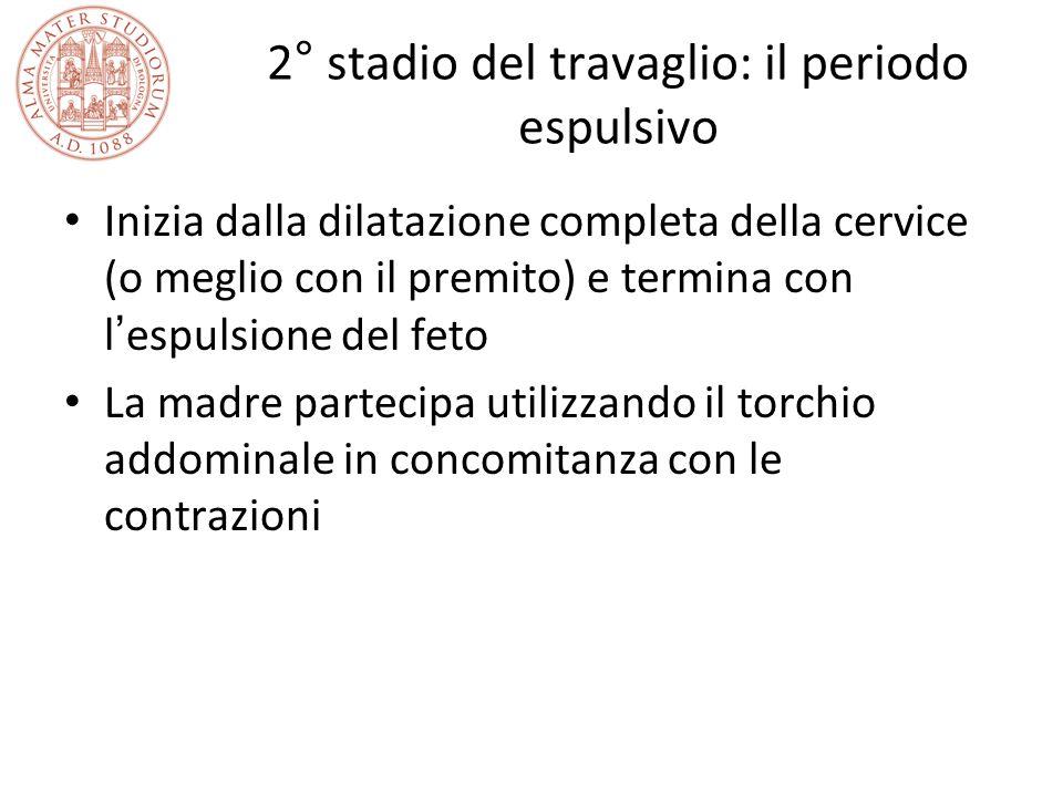 2° stadio del travaglio: il periodo espulsivo Inizia dalla dilatazione completa della cervice (o meglio con il premito) e termina con l ' espulsione d