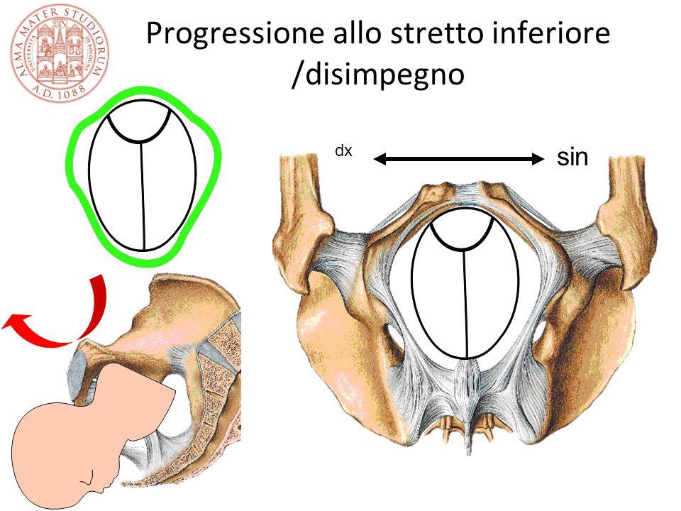 Progressione allo stretto inferiore /disimpegno dx sin