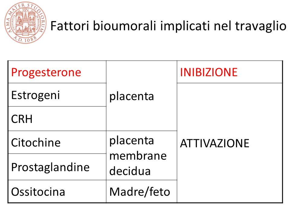 Fattori bioumorali implicati nel travaglio Progesterone placenta INIBIZIONE Estrogeni ATTIVAZIONE CRH Citochine placenta membrane decidua Prostaglandi