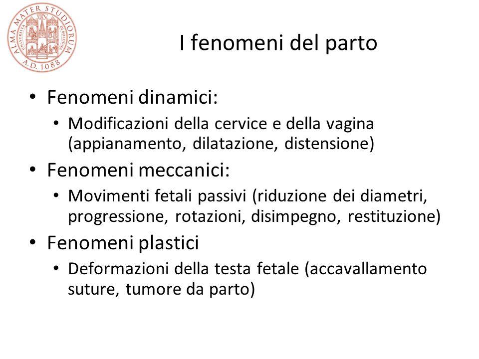 I fenomeni del parto Fenomeni dinamici: Modificazioni della cervice e della vagina (appianamento, dilatazione, distensione) Fenomeni meccanici: Movime
