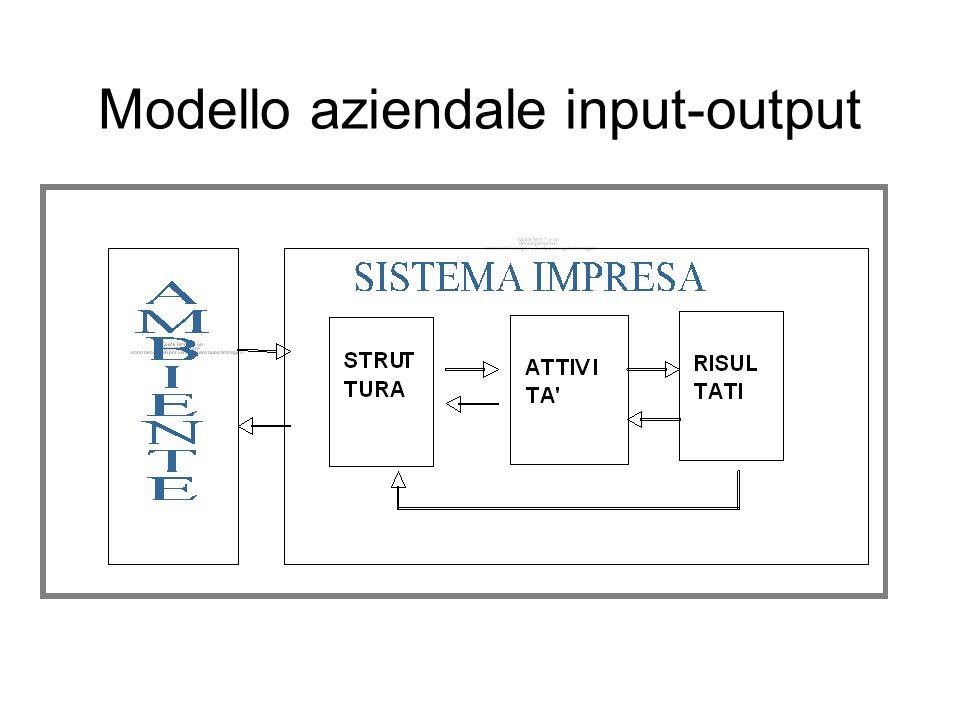 Nel modello input-output sono quali parti del sistema impresa: -la sua struttura: cioè le variabili/risorse che costituiscono il suo assetto istituzionale, organizzativo e patrimoniale; -le attività: ovvero tutte le decisioni e le azioni che si compiono utilizzando quella struttura al fine di ottenere determinati risultati.