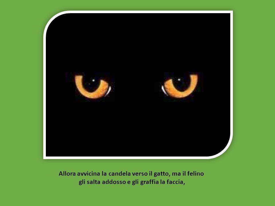e vede gli occhi del gatto brillare nell'oscurità, scambiandoli per carboni ardenti.