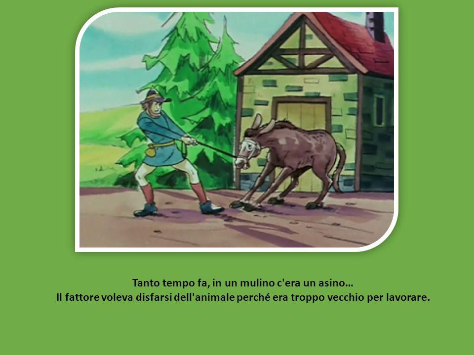 Tanto tempo fa, in un mulino c era un asino… Il fattore voleva disfarsi dell animale perché era troppo vecchio per lavorare.