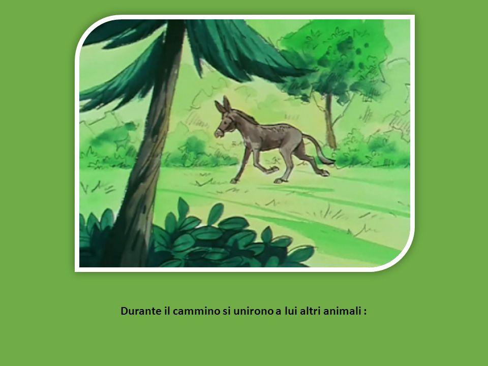 Durante il cammino si unirono a lui altri animali :