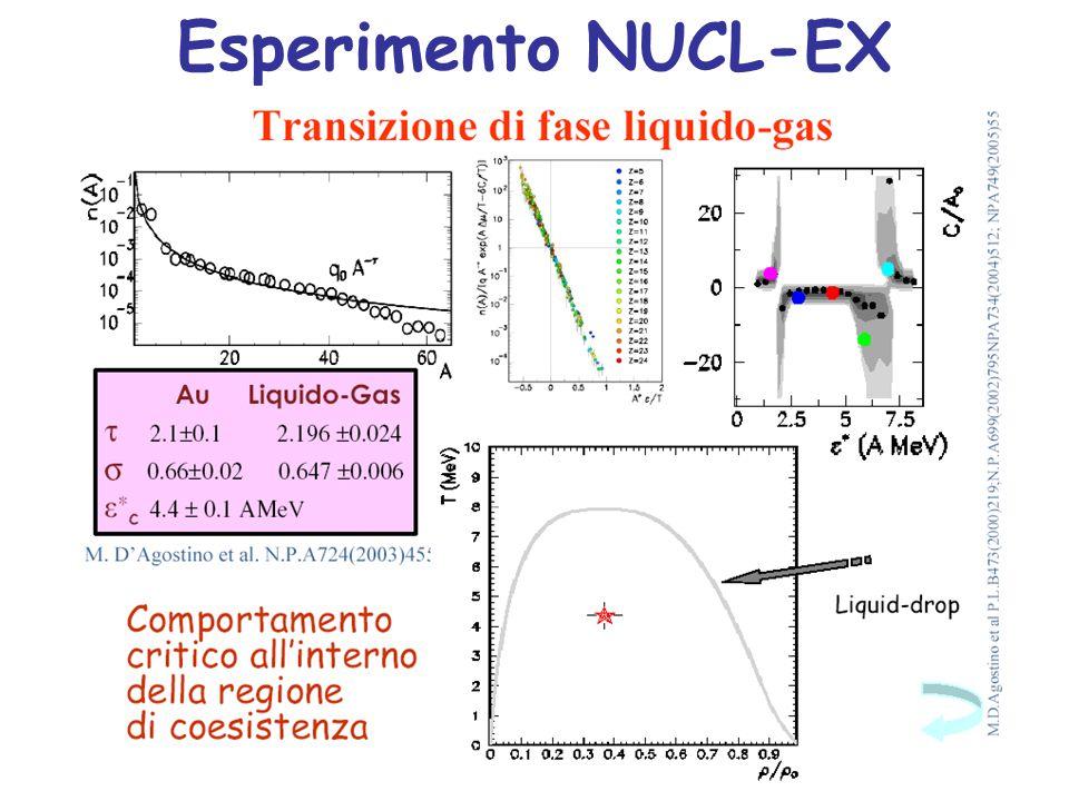 Esperimento NUCL-EX