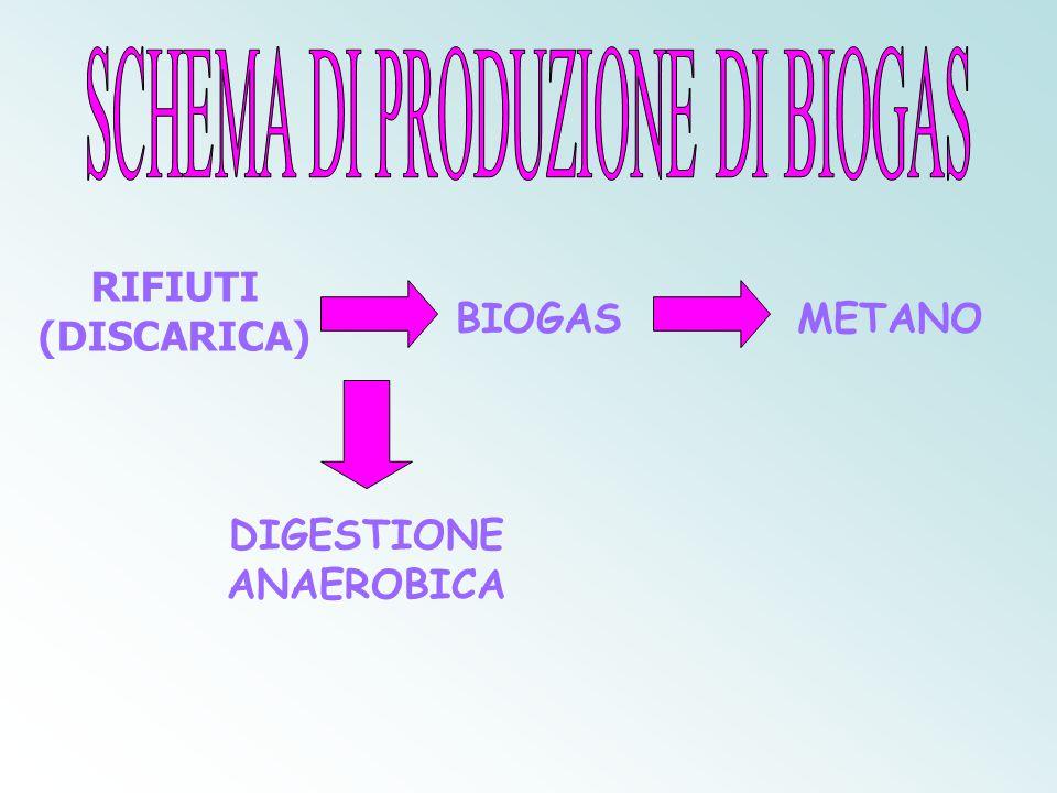 Digestione anaerobica assenza di ossigeno La digestione anaerobica è un processo biologico che, in assenza di ossigeno, trasforma la sostanza organica in biogas.