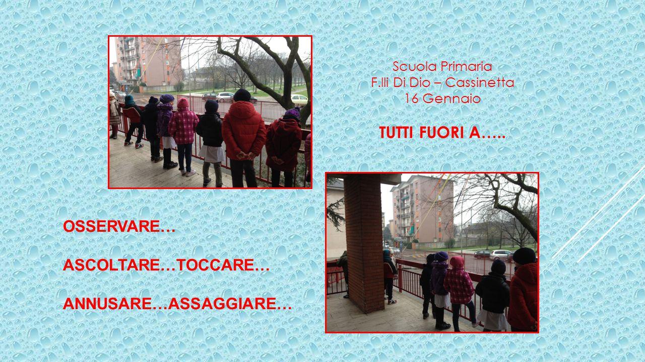 Scuola Primaria F.lli Di Dio – Cassinetta 16 Gennaio TUTTI FUORI A…..
