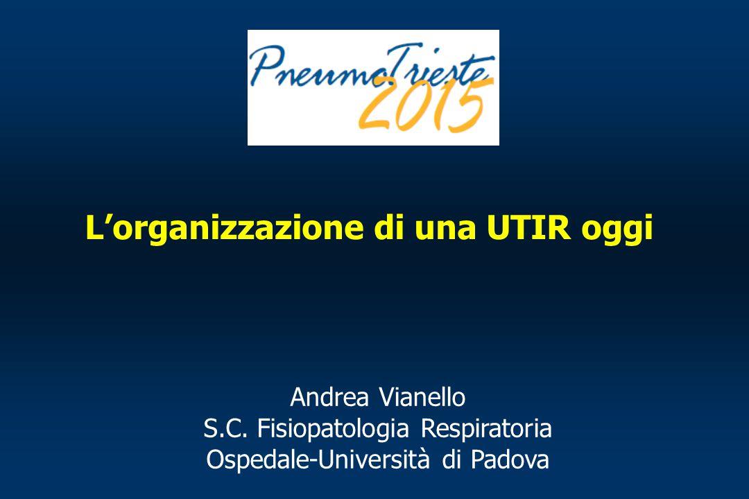 Andrea Vianello S.C. Fisiopatologia Respiratoria Ospedale-Università di Padova L'organizzazione di una UTIR oggi