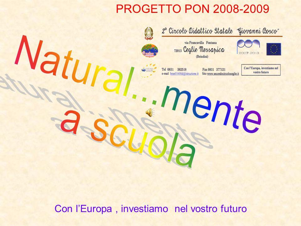 PROGETTO PON 2008-2009 Con l'Europa, investiamo nel vostro futuro