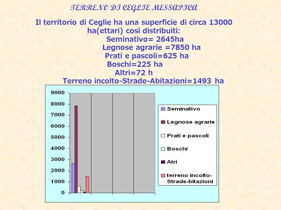 TERRENO DI CEGLIE MESSAPICA Il territorio di Ceglie ha una superficie di circa 13000 ha(ettari) così distribuiti: Seminativo= 2645ha Legnose agrarie =