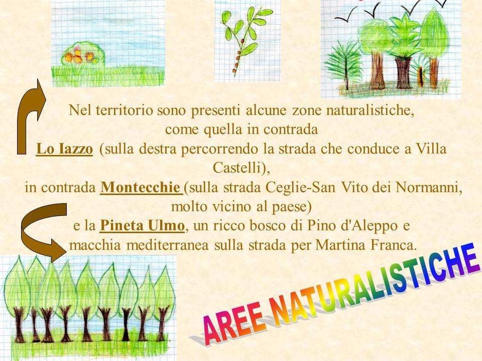 Villa Castelli Ostuni Francavilla Fontana San Vito dei N.