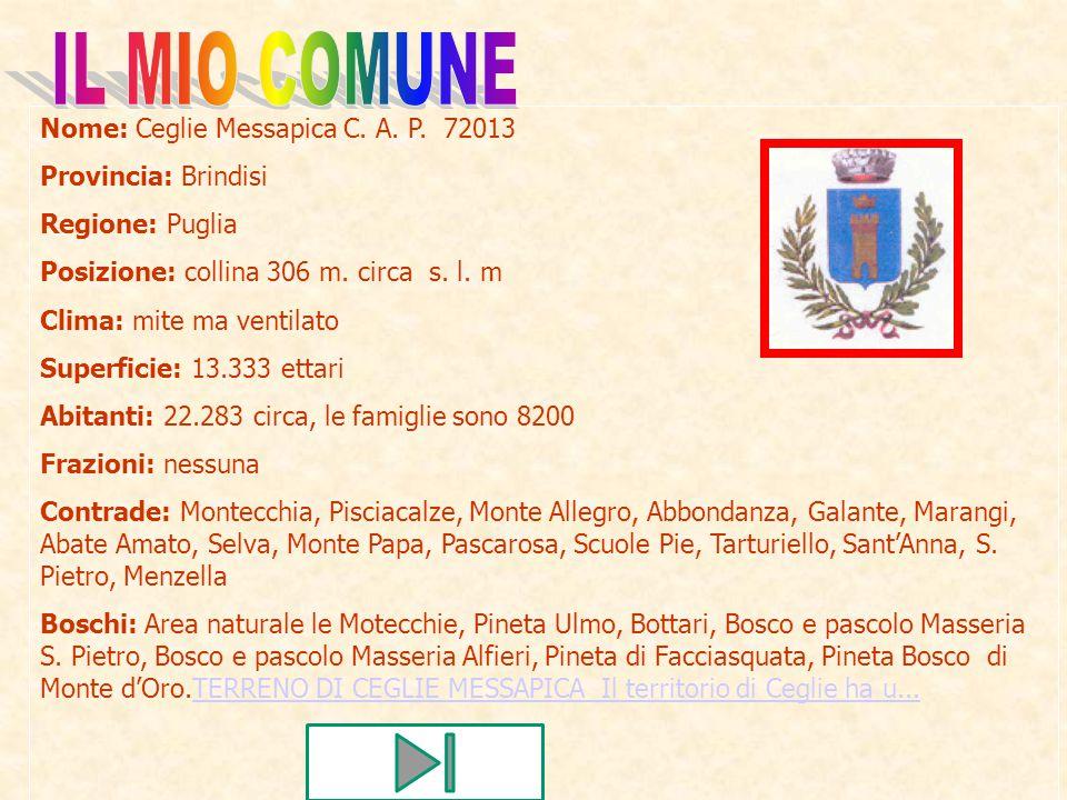 Nome: Ceglie Messapica C. A. P. 72013 Provincia: Brindisi Regione: Puglia Posizione: collina 306 m. circa s. l. m Clima: mite ma ventilato Superficie: