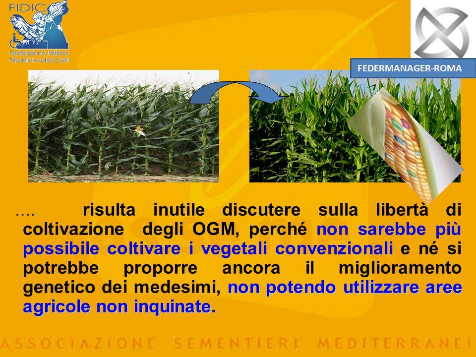 I dibattiti fino ad ora svoltisi, anche tra i contrari agli OGM, non hanno approfondito con la dovuta e necessaria attenzione questo problema (fondame