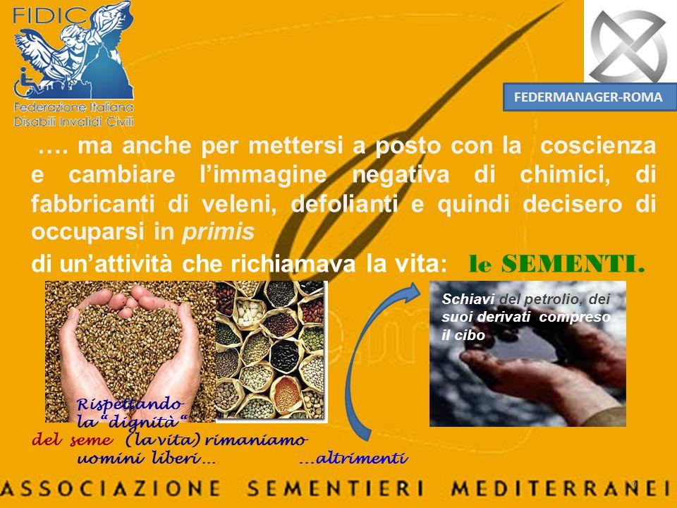 Colture Seme base Seme certificato Mais 200 m.200 m.