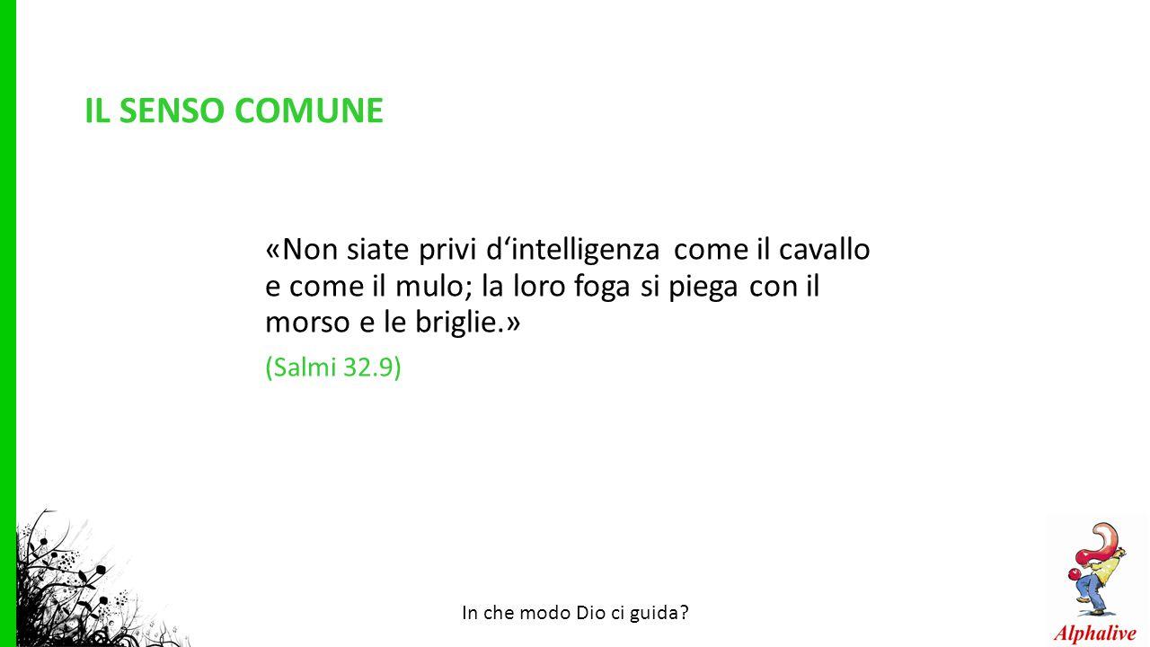 IL SENSO COMUNE «Non siate privi d'intelligenza come il cavallo e come il mulo; la loro foga si piega con il morso e le briglie.» (Salmi 32.9) In che modo Dio ci guida?