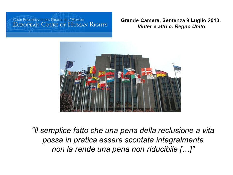 Grande Camera, Sentenza 9 Luglio 2013, Vinter e altri c.