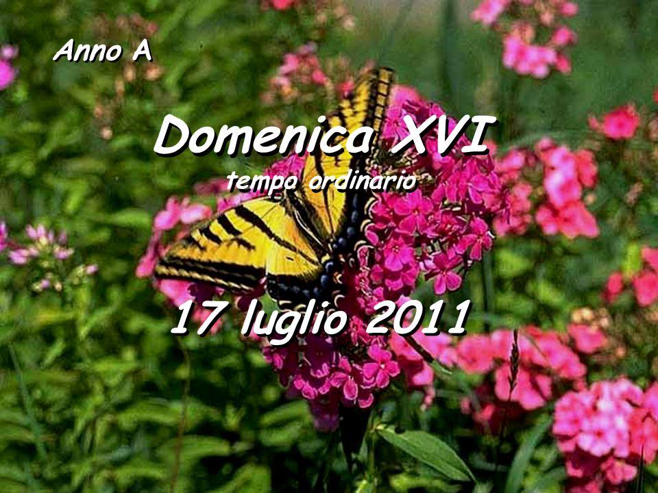 Anno A Domenica XVI tempo ordinario Domenica XVI tempo ordinario 17 luglio 2011