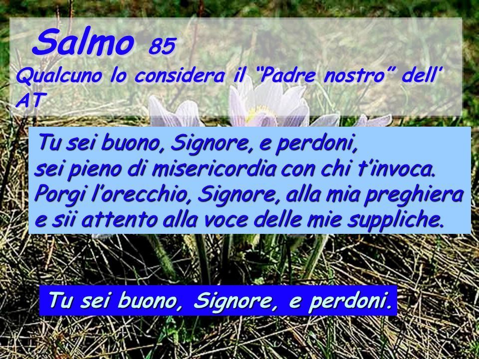 """Salmo 85 Salmo 85 Qualcuno lo considera il """"Padre nostro"""" dell' AT Salmo 85 Salmo 85 Qualcuno lo considera il """"Padre nostro"""" dell' AT Tu sei buono, Si"""