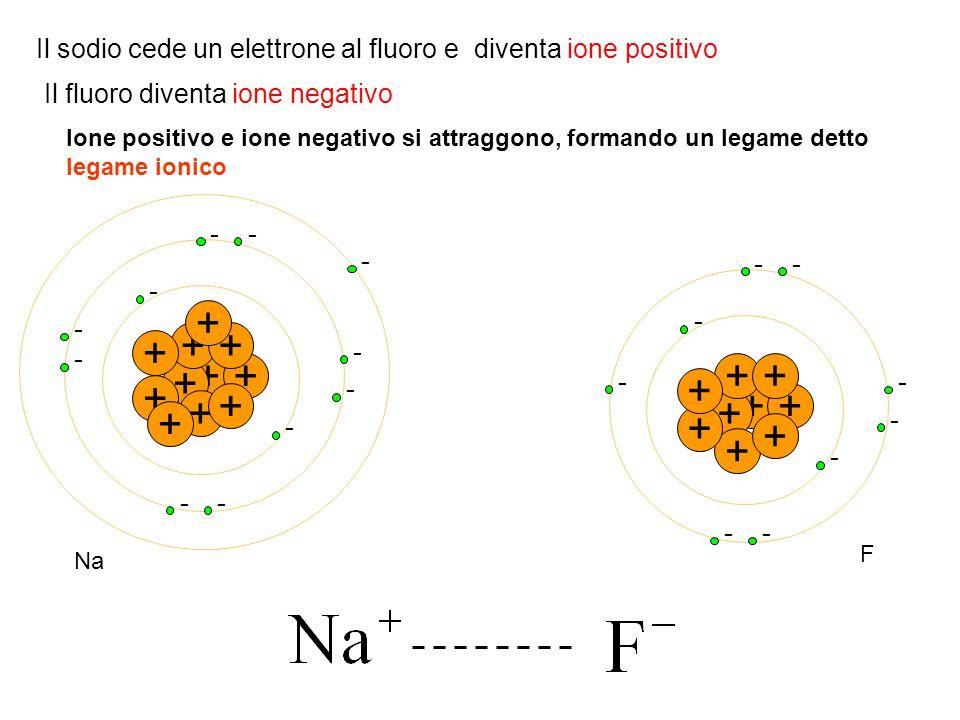 + - - + + - ++ - - + - + - + - + - + - - + + - - + + - ++ - + - + - + - -- + Na F Il sodio cede un elettrone al fluoro e diventa ione positivo Il fluo