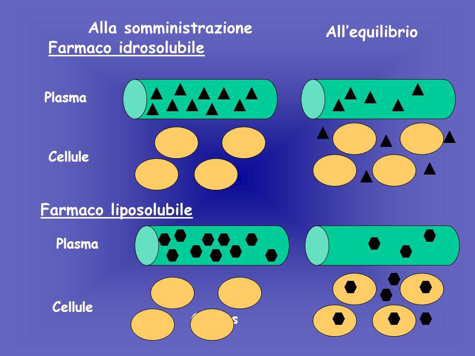 Farmaco idrosolubile Farmaco liposolubile Alla somministrazione Plasma Cellule Plasma Cellules All'equilibrio Cellule