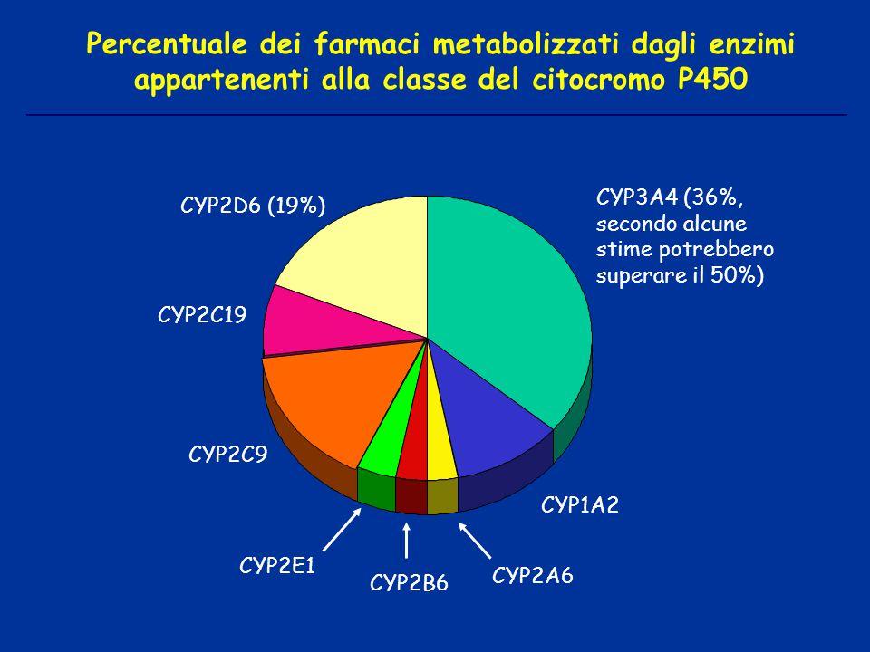CYP3A4 (36%, secondo alcune stime potrebbero superare il 50%) CYP2E1 CYP2B6 CYP2A6 CYP1A2 CYP2D6 (19%) CYP2C9 CYP2C19 Percentuale dei farmaci metaboli