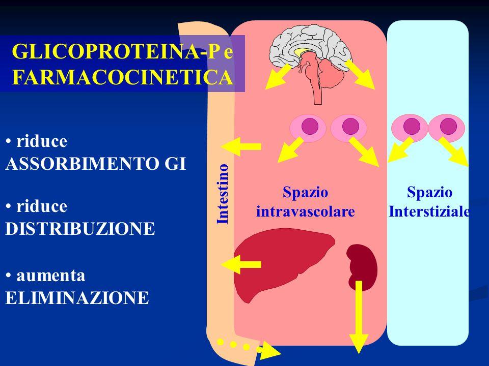 Spazio Interstiziale Spazio intravascolare GLICOPROTEINA-P e FARMACOCINETICA Intestino riduce ASSORBIMENTO GI riduce DISTRIBUZIONE aumenta ELIMINAZION
