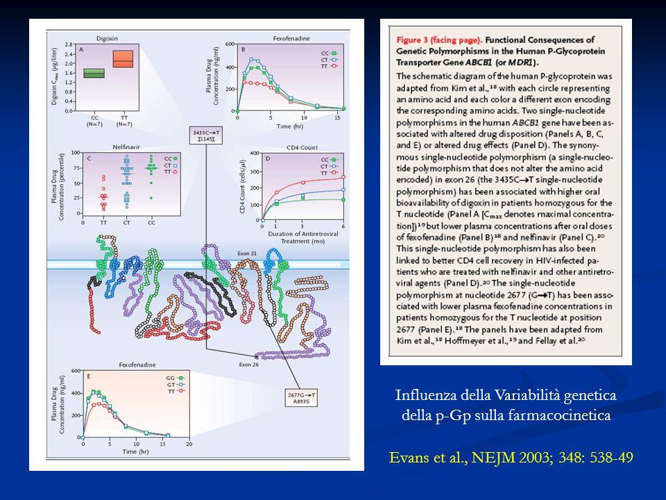 Evans et al., NEJM 2003; 348: 538-49 Influenza della Variabilità genetica della p-Gp sulla farmacocinetica