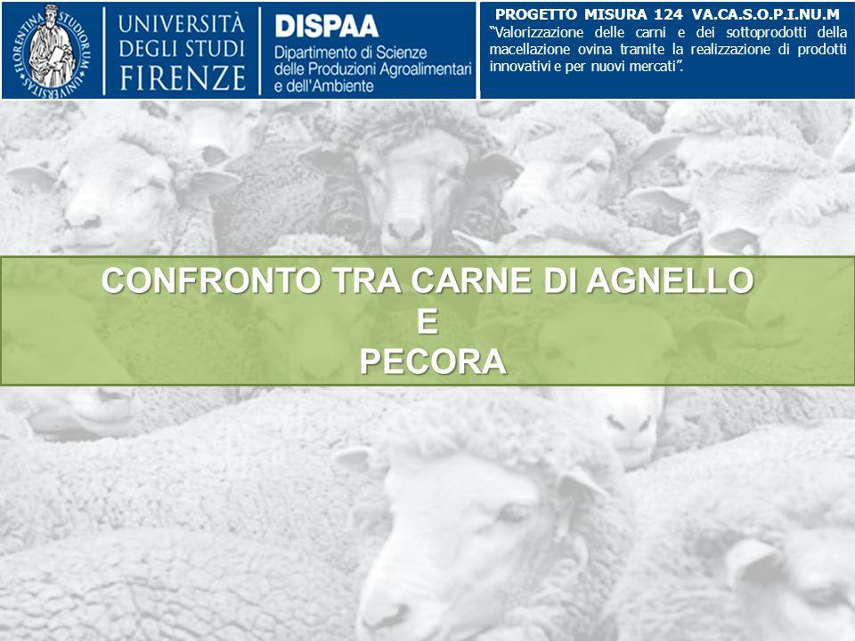 """CONFRONTO TRA CARNE DI AGNELLO E PECORA PROGETTO MISURA 124 VA.CA.S.O.P.I.NU.M """"Valorizzazione delle carni e dei sottoprodotti della macellazione ovin"""