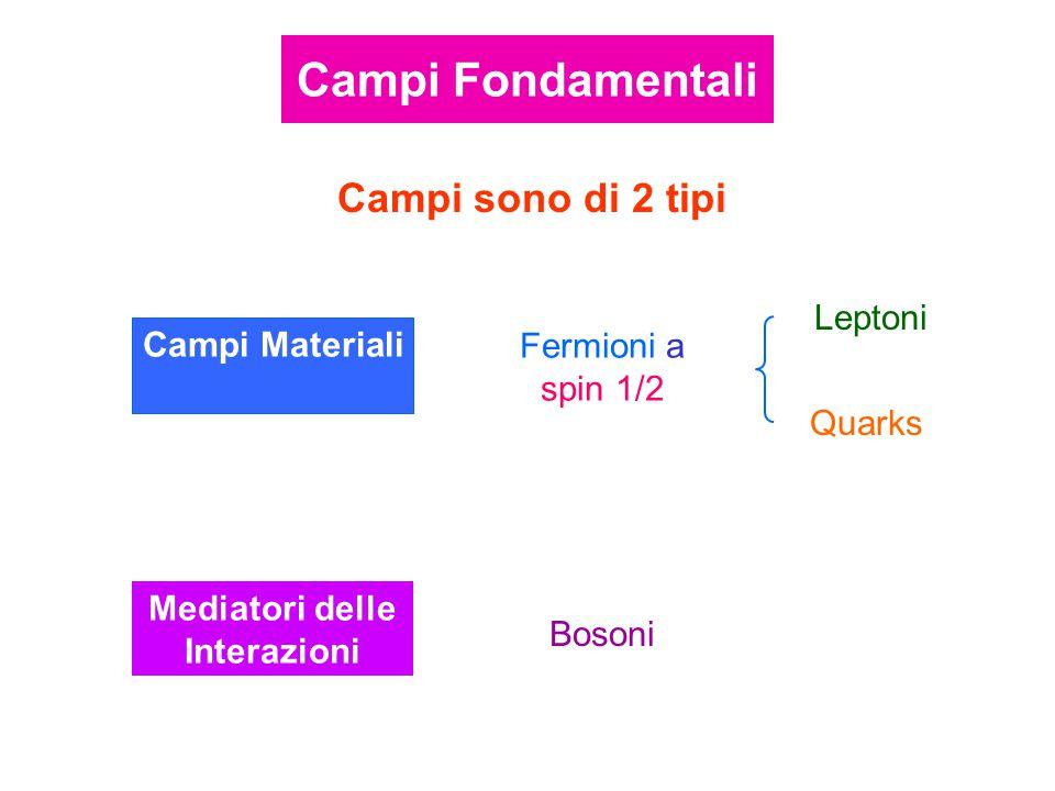 Campi Materiali Fermioni a spin 1/2 Leptoni Quarks Campi sono di 2 tipi Mediatori delle Interazioni Bosoni Campi Fondamentali