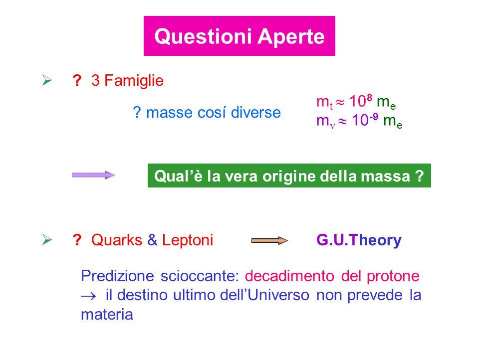  ? 3 Famiglie m t  10 8 m e m  10 -9 m e ? masse cosí diverse Qual'è la vera origine della massa ?  ? Quarks & Leptoni G.U.Theory Predizione scioc